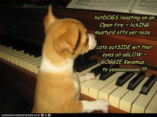 chihuahua christmas eyes hotdog lick lolcats Music nose outside piano signing
