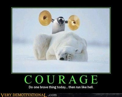 courage,cymbals,insane,penguin,polar bear,Pure Awesome