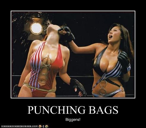 PUNCHING BAGS Biggens!