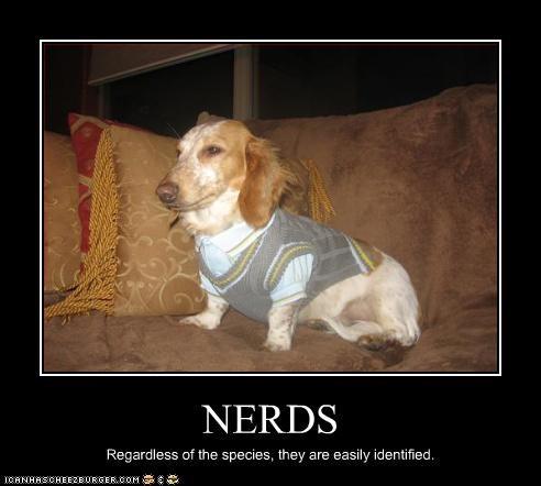 basset hound nerd sweater - 2928603904