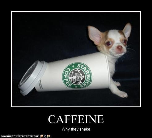 CAFFEINE Why they shake