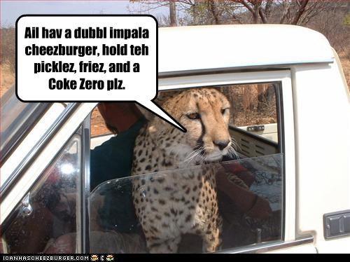 Ail hav a dubbl impala cheezburger, hold teh picklez, friez, and a Coke Zero plz.