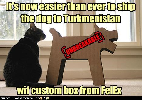 It's now easier than ever to ship the dog to Turkmenistan wif custom box from FelEx UNBREAKABLE 0 0 0 0 0 0 0 0