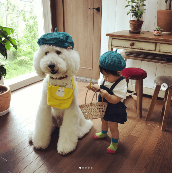 photos of a japanese girl with her giant poodle