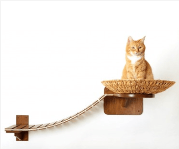 this German company designs cat furniture