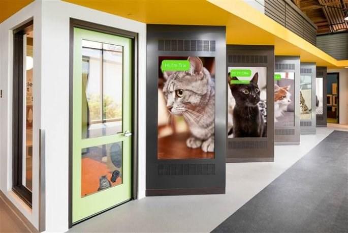 new LA animal shelter