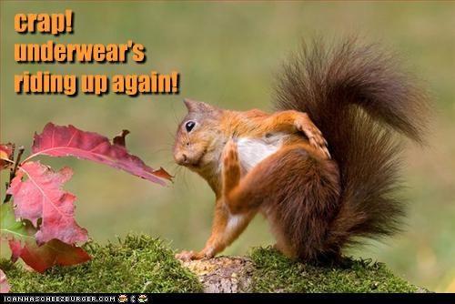 lolsquirrels oh noes underwear - 2935328512