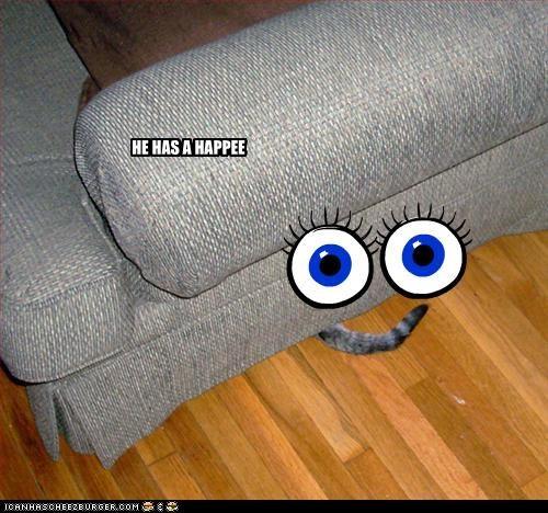 Cheezburger Image 2939235328