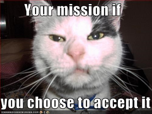 Image result for your mission if you choose to accept it funny