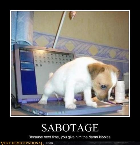 SABOTAGE Because next time, you give him the damn kibbles.