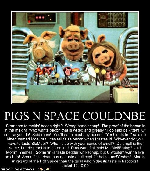 """PIGS N SPACE COULDNBE Strangers to makin' bacon right? Wrong harfelspeep! The proof of the bacon is in the makin! Who wants bacon that is wilted and greasy? I do said de kitteh! Of course you do! Said mom! You'll eat almost any bacon! """"Yesh dats tru!"""" said de kitteh named Moe, but I can tell false bacon when I tastes it! Whyever do you have to taste SloMoe!? What is up with your sense of smell? De smell is the same, but de proof is in de eating! Dats wat I fink said MeiMei!Eating? sa"""