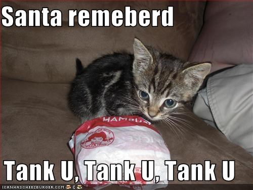 cheezburger,cute,happy,kitten,kthxbai,santa