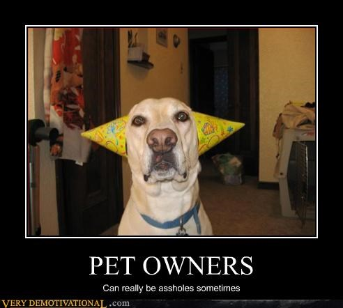 pets costume pet owners funny - 2943977984