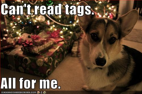 christmas corgi gift selfish