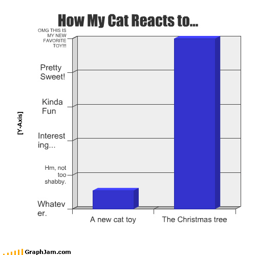 cat,christmas,favorite,fun,interesting,new,reacts,sweet,toy,tree