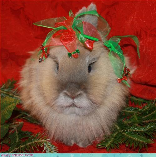 bunny christmas costume - 2944840704