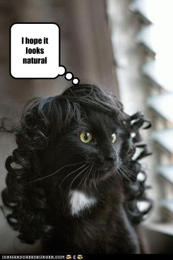 costume,nervous,wig