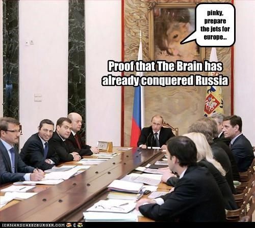 Proof that The Brain has already conquered Russia pinky, prepare the jets for europe...