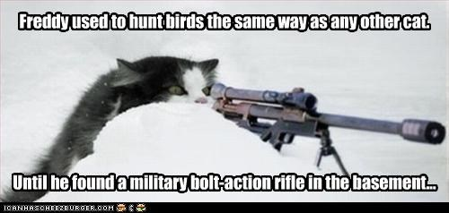 attacking gun hunting shooting snow - 2949163008
