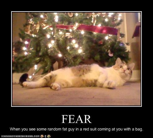 christmas,fear,holiday lols 2010,santa,scared