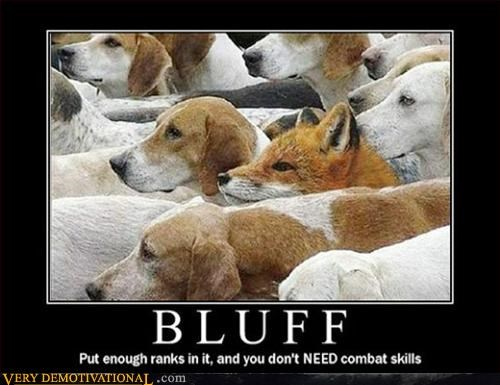 amazing bluff fox hounds Pure Awesome wtf