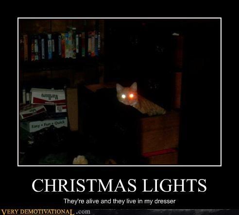 christmas lights alive funny - 2950784000