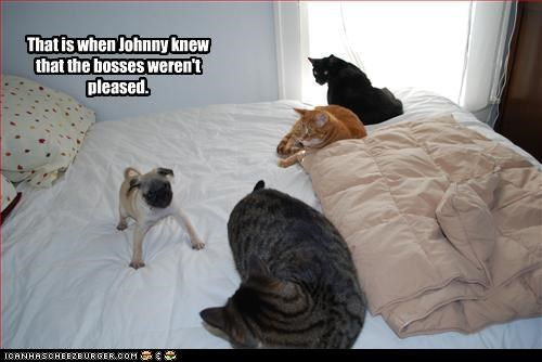 That is when Johnny knew that the bosses weren't pleased.