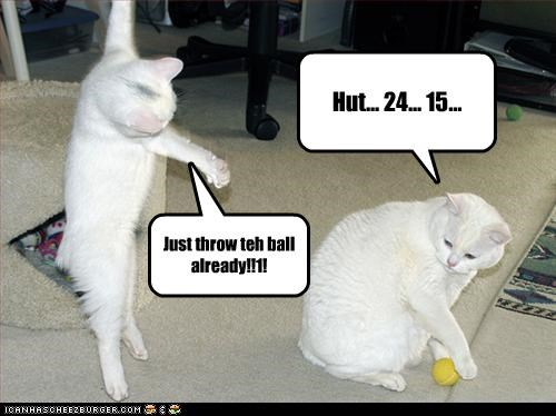 Hut... 24... 15... Just throw teh ball already!!1!