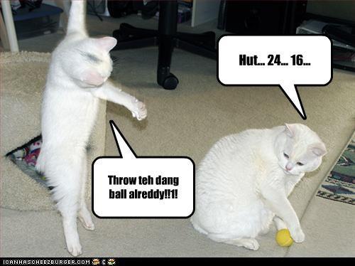 Hut... 24... 16... Throw teh dang ball alreddy!!1!