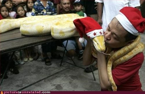 handler hat santas-little-helper snake why wtf