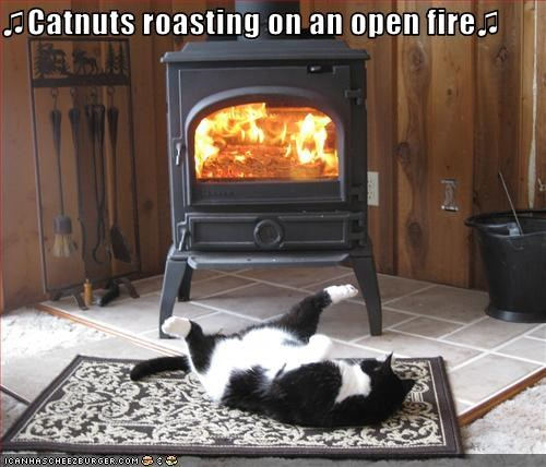 fireplace harbls warm - 2956965888