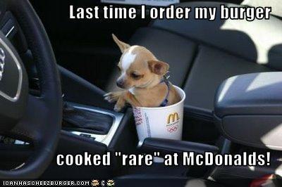 Cheezburger Image 2958226944