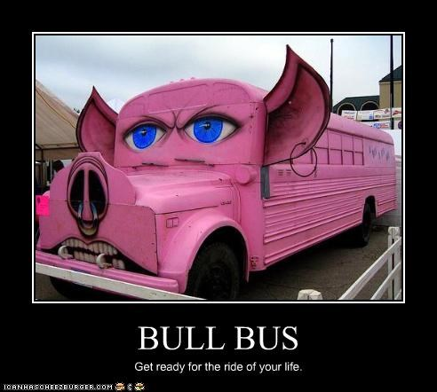 BULL BUS Get ready for the ride of your life.