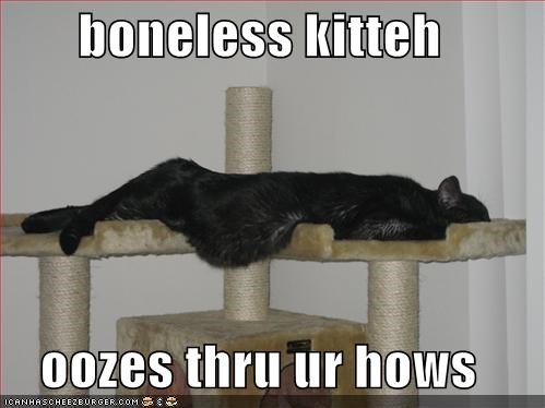 action boneless caption captioned cat movement moving ooze oozes - 295873792