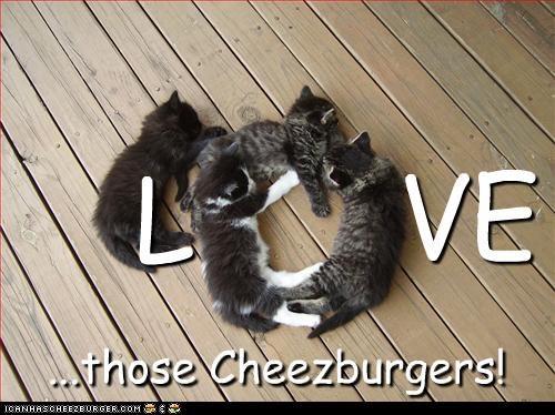 Cheezburger Image 2960374016