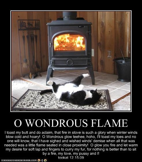 O WONDROUS FLAME I toast my butt and do aclaim, that fire in stove is such a glory when winter winds blow cold and hoary! O Wondrous glow teehee, hoho, I'll toast my toes and no one will know, that I have sighed and wished winds' demise when all that was needed was a little flame seated in close proximity! O glow you fire and let warm my desire for soft lap and fingers to curry my fur, for nothing is better than to sit by a fire, my love, my pussy and I! tookat 12.15.09