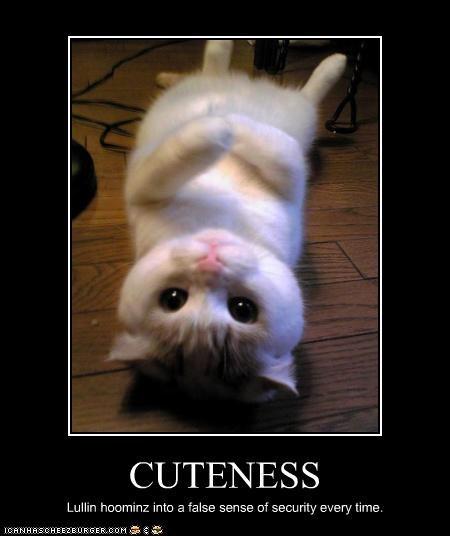 cute - 2962100736