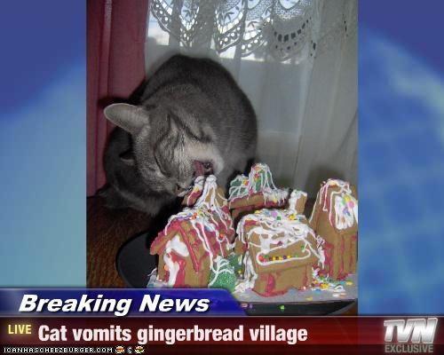 Cheezburger Image 2962447872