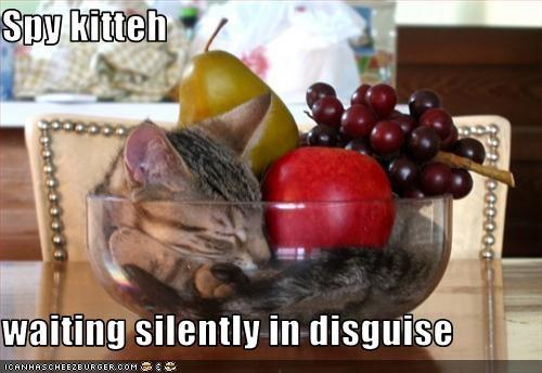 fruit hiding sneaky spy - 2963660032