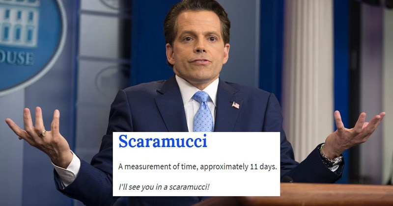 Compilation of funny memes of Urban Dictionary definition entries on Anthony Scaramucci.