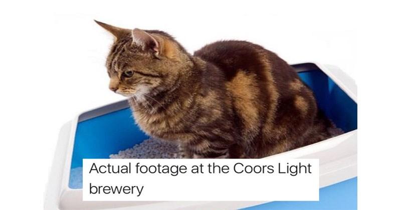 memebase coors light all your memes in our base funny memes