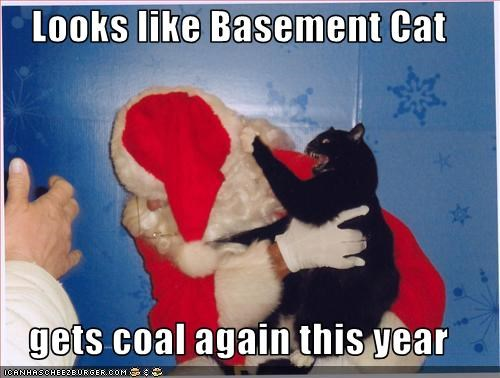 attacking bad cat basement cat christmas coal holiday lols 2010 santa - 2964785664