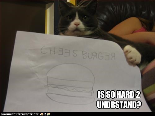 Cheezburger Image 2964859392