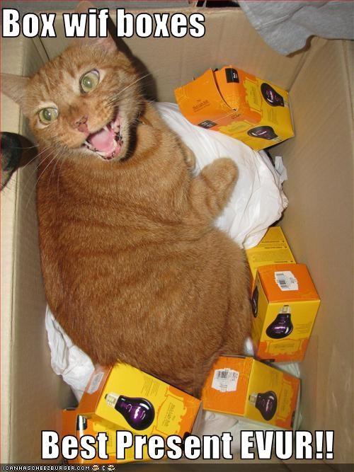 box,christmas,happy,present