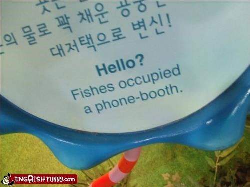 booth fish g rated hello occupied phone - 2965069312