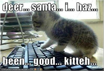 computer,cute,kitten,santa