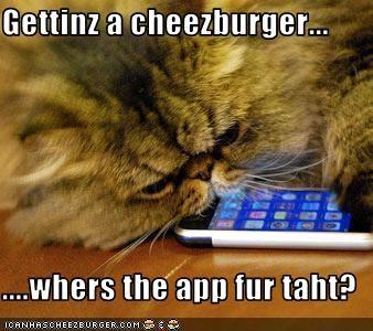 Cheezburger Image 2968348416