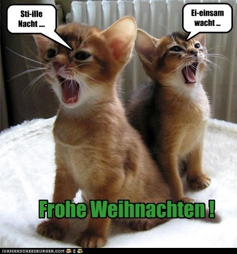 Weihnachten Funny.Frohe Weihnachten Cheezburger Funny Memes Funny Pictures