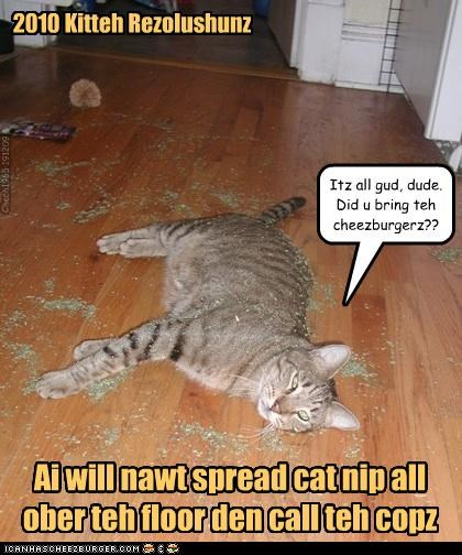 2010 Kitteh Rezolushunz Ai will nawt spread cat nip all ober teh floor den call teh copz Itz all gud, dude. Did u bring teh cheezburgerz?? Chech1965 191209