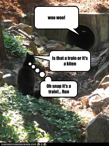 woo woo! is that a train or it's a kiten Oh snap it's a train!... Run